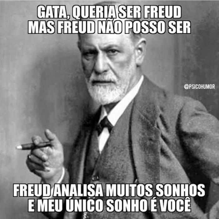 Freud Sonhos